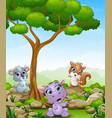 cartoon hippo with koala and squirrel in the jungl vector image vector image