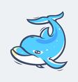 Dolphin sea life