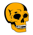human skull icon icon cartoon vector image vector image