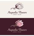Magnolia flower logo vector image vector image