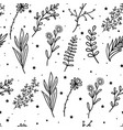 seamless pattern mystical flowers and branches vector image vector image