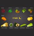 vitamin b9 in food vector image vector image