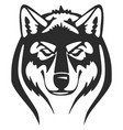 wolfs heads vector image