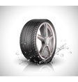 Car wheel with splashing water in motion blur on vector image
