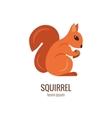 Colorfu cartoon squirrel logo vector image vector image