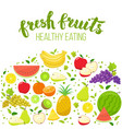 colorful fruits vector image
