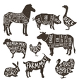 farm animals silhouette typographics vector image