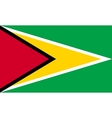 Flag of Guyana in correct proportions and colors vector image vector image