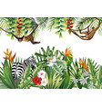 tropical with flowers plants monkey zebra vector image