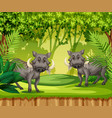 two wild boars in jungle vector image vector image