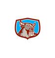 Angry Bull Head Padlock Shield Retro vector image vector image