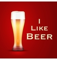 I love beer vector image