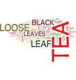 loose leaf black tea text background word cloud vector image vector image