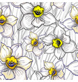 monochrome floral seamless pattern with hand drawn vector image vector image