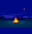 night campfire on glade vector image vector image