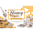 sketch honey background hand drawn sweet dessert vector image