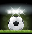 soccer ball on grass in night time vector image vector image