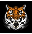 Tigers Face of a tiger head vector image