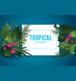 tropical nature background vector image vector image