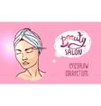 beauty salon vector image