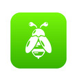 bee icon simple black style vector image vector image