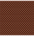 chocolate wafer background vector image vector image