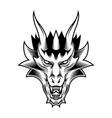 dragon fantasy head vector image