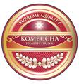 Kombucha vector image vector image