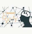 melatonin hormone molecule vector image vector image