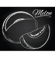 Melon on the chalkboard background vector image vector image