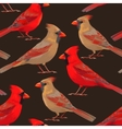 Seamless nothern cardinals vector image vector image