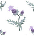 thistle spike flower hand drawn seamless pattern vector image vector image