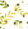 watercolor seamless pattern with olives vector image