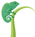 Chameleon Icon vector image vector image