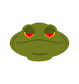 frog head isolated face of toad amphibian animal vector image vector image