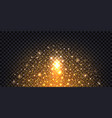 golden glitter sparkles and glowing luminous vector image