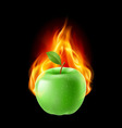 Green apple in the fire vector image vector image