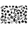 leaf silhouettes tree leaves and seeds icons vector image