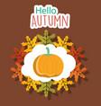 pumpkin hello autumn design icon vector image