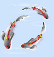 set with fish carp koi in water vector image