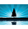 Solitary fir tree vector | Price: 1 Credit (USD $1)