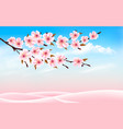 spring nature background with cherry branch and vector image vector image