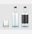 transparent vodka bottle mockup realistic vodka vector image vector image