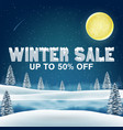winter sale 50 percent with winter lake background vector image vector image