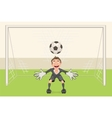 Goalkeeper catches soccer ball Penalty kick in vector image