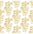 hypericum graphic pattern in hand drawn style vector image vector image