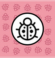 ladybug icon sign and symbol on pink background vector image vector image