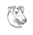 manchester terrier head drawing vector image vector image