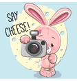 Rabbit with a camera vector image vector image