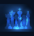 set of chess figures vector image vector image